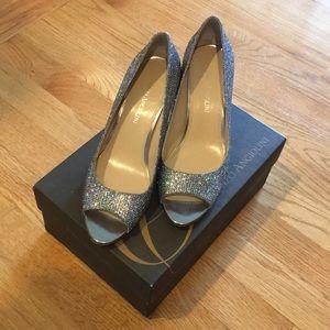 Silver Enzo Angiolini heels